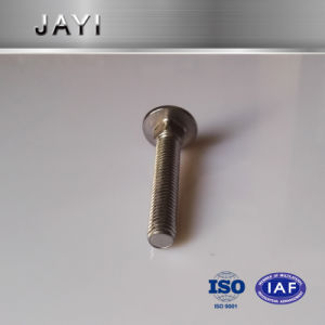 Carriage Bolts with Bright Chrome Plated pictures & photos