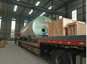 Competetive Price Gas Fired Steam Boiler/Oil Fired Steam Boiler pictures & photos