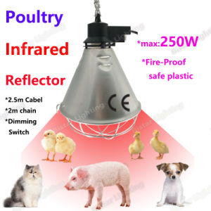 Infrared Heat Lamp Bulb Clear IR R125 R40 150W 175W 250W pictures & photos