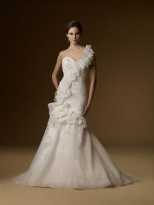 Train Bridal Dress and Wedding Gown (C5116)