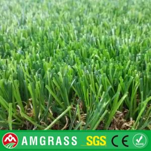 Rooftop Grass and Artificial Grass with High Quality