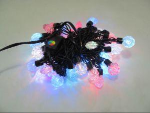 LED Christmas Light Sjq01