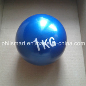 Gym Sand Filled Soft Weight Ball pictures & photos