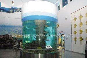 Good Transparent Acrylic Cylindrical Fish Tank pictures & photos