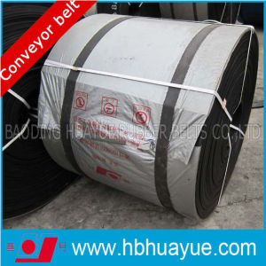 Ep Moulded Edge Conveyor Belts pictures & photos