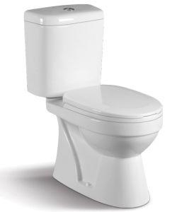 Washdown Two-Piece Toilet Closet CE-T192 pictures & photos