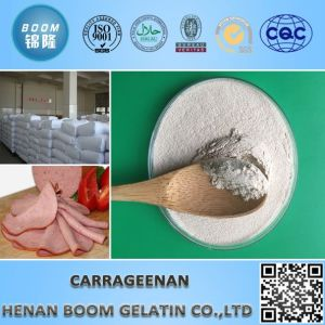 Hot Sale Carrageenan Jelly Powder as Food Additives pictures & photos