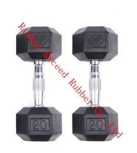 Gym Equipment Fitness Equipment Exercise Hex Dumbbell