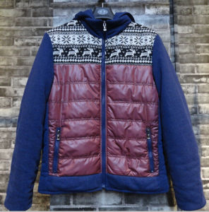 Hoody Contrast Deer Vintage Fashion New Style Down Men Padding Jackets pictures & photos