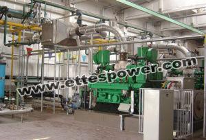 500kw/625kVA Biomass Generator Set