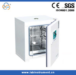 Laboratory Constant Temperature Incubator Ce 125L Stainless Steel Inner pictures & photos