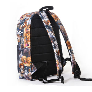 Leisure & Casual Bag, Backpack, Carton School Bag, Satchel (MH51) pictures & photos