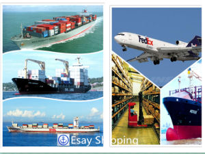 Consolidate Shipping Service From China to Brazil Shipping pictures & photos