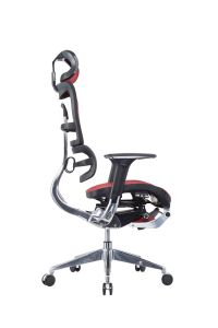 Manager Executive Office Mesh Chair with Footrest pictures & photos