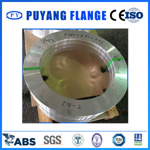 Forged Stainless Steel Plate Flange 304 (PY0099) pictures & photos