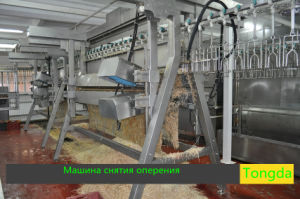 Chicken Slaughter Equipment pictures & photos
