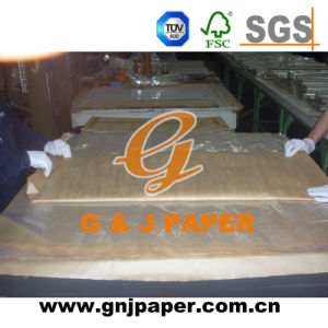 Roll Size Transparent Packaging Paper for Gift and Food Wrapping pictures & photos