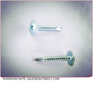 Stainless Steel Truss Head Self Drilling Screw, Stainless Steel 304 316, or Zinc Plated pictures & photos