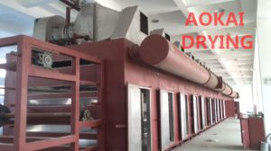 Dw Series Mesh-Belt Drying Machine pictures & photos