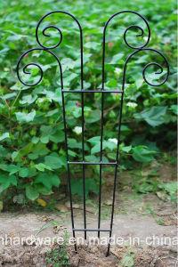 Garden Trellis Fence pictures & photos