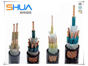 China Best Price Copper Conductor PVC Insulated Copper Braided Screen PVC Sheathed Control/Instrument Cable pictures & photos