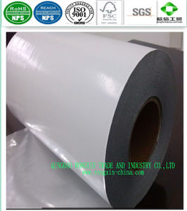 PE Coated Paper for Paper Cups pictures & photos