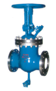 Gate Valve with Ablution Holes Forming