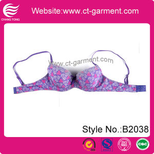 Lady Hot New Design Sexy Lace Bra (B2038) pictures & photos