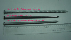 Gutter Spike Painted HDG Electronic Galvanized pictures & photos