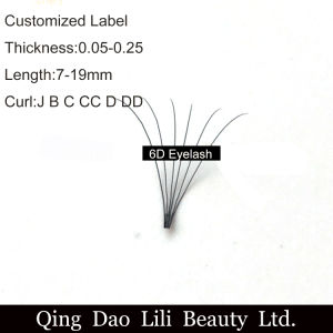Synthetic Hair 0.07mm C Curl 6D Russian Volume Lashes 6D Knot-Free Cluster Lashes Pure Hand Made Premade Fans Private Label pictures & photos