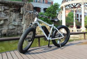 China 26inch Fat Tire Snow Sand Moutain Electric Bicycle pictures & photos