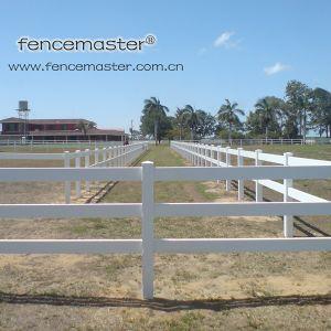 PVC Horse Fence pictures & photos