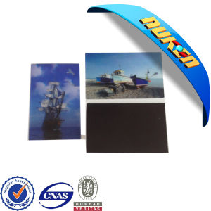 High Quality Plastic 3D Lenticular Fridge Magnet pictures & photos