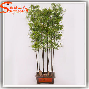 Hot Sale Artificial Plastic Mini Bamboo Plant Tree pictures & photos