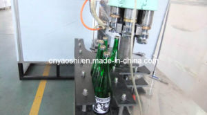 Glass Capping Machine, Capping Machine, Packing Machine pictures & photos