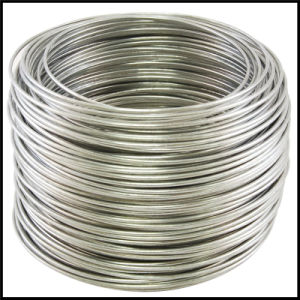 High Quality Electric Galvanized Wire Zinc Wire pictures & photos