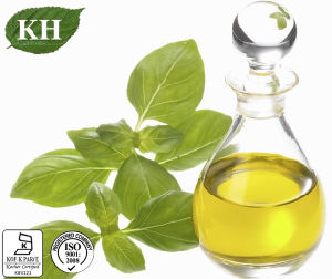 Basil Oil: 100% Pure Basil Oil pictures & photos