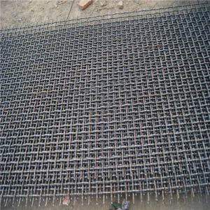 Galvanized Crimped Wire Mesh with Best Quality (AH-1340)