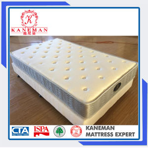 5 Star Bonnell Spring Compressed Bed Mattress pictures & photos