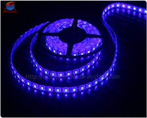 Outdoor 30/60SMD 5050 LED Lighting Strip