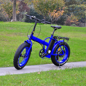 Hot Selling Fat Tire Folding Electric Bike in China (RSEB-507) pictures & photos