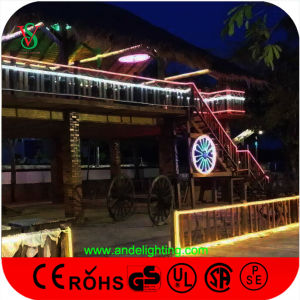 Double Faces Christmas Outdoor Decoration LED Flex Neon pictures & photos