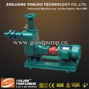 Zw Sewage Pump with Solid 10mm, Self-Suction Pump pictures & photos