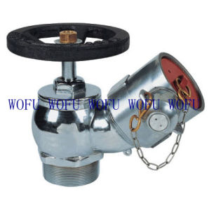 "2.5"" Aluminium Fire Fighting Landing Valve pictures & photos"
