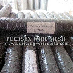Galvanized/PVC Coated Hexagonal Wire Neeting pictures & photos