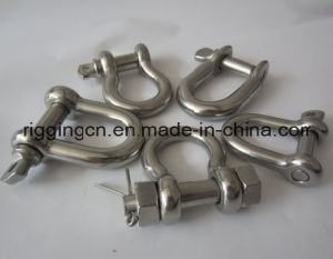 Customized Special Size Long D Shackle in Ss 316 pictures & photos