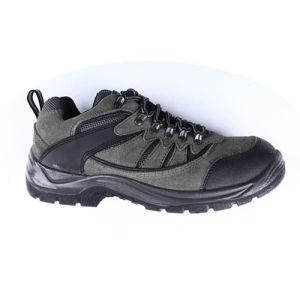 Men ′s Hiking Shoes