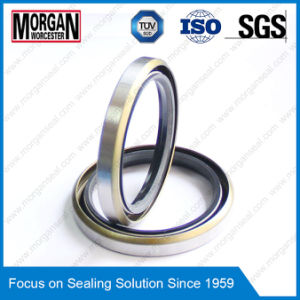 NBR/FKM Outer Skeleton Double Lips BS/Tb Type Oil Seals pictures & photos