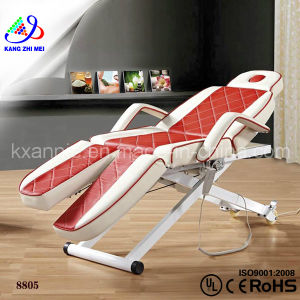 Beauty Salon Facial Bed for Sale (8805)
