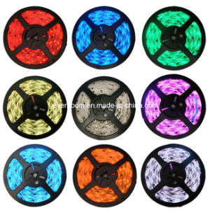 12V SMD5050 LED Strip Light 5m/Roll